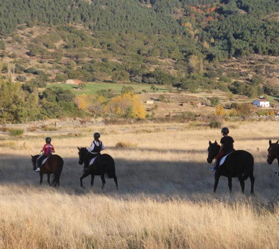 rutas-a-caballo-casa-rural-avilaOK